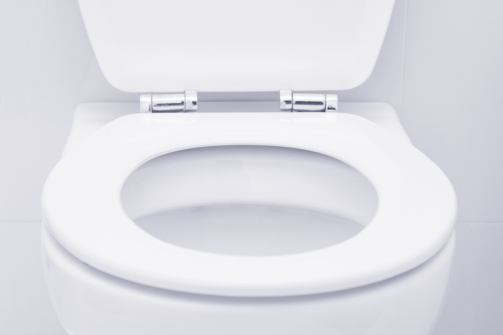 Toilet Installation Made Easy in Your Bothell Home