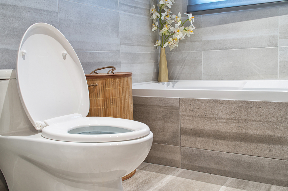 Should I Repair or Replace the Toilet in My Brier Home?